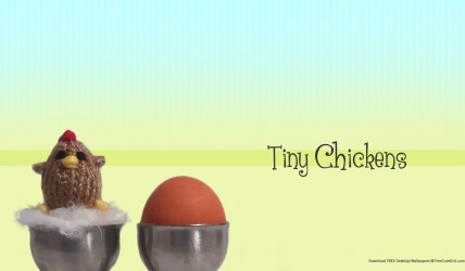 Free tiny chicken desktop wallpaper